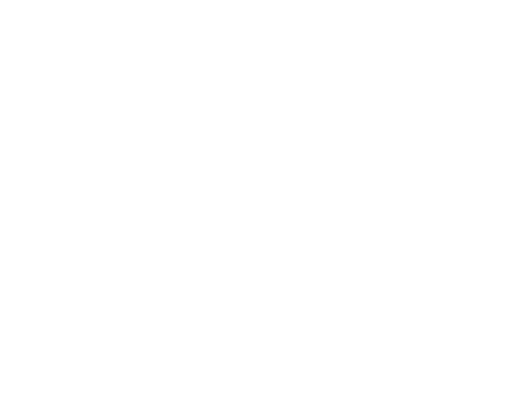 Bike the Big Easy Logo Reverse
